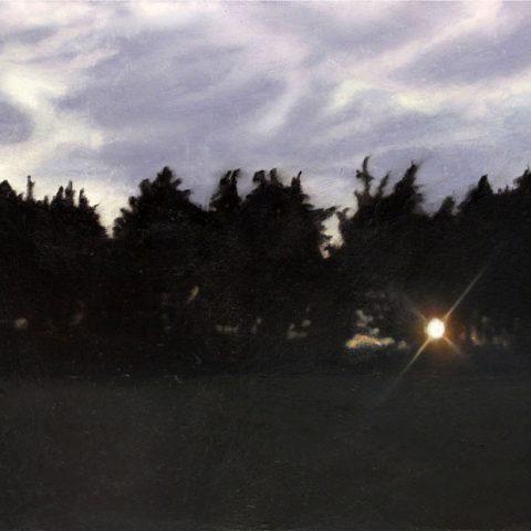 24 Trees 2 950px-